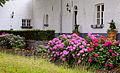 Hortensien geschmücktes Haus am Stadtgraben in Thorn.jpg