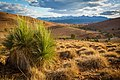 Hucks Lookout, towards Wilpena Pound, Flinders Ranges - South Australia.jpg