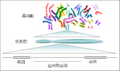 Human genome to genes zh.png