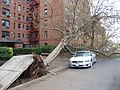 Hurricane Sandy Effects - Ocean Ave Brooklyn.JPG