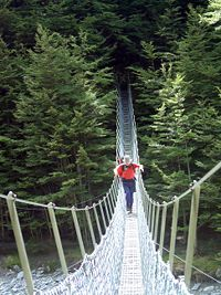 Crossing a swing bridge on the Huxley River in the South Island of New Zealand.