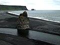 Iceland - Dyrholaey - Road Trip (4890576996).jpg