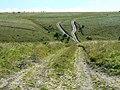 Imber range, north of Imber, Salisbury Plain - geograph.org.uk - 535094.jpg