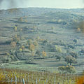 In the neighborhood Sangerei (1980). (14449490026).jpg