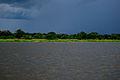 Incoming Rainstorm (18161681295).jpg