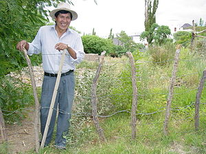 Cachi, Argentina - Argentinian farmer in Cachi.