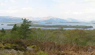 Loch Lomond National Nature Reserve - Image: Innisnacailleach