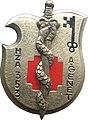 Insigne régimentaire 353e hôpital de zone des armées André Genet (353e HZA).jpg