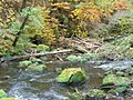 Irreler Wasserfaelle, Pruemtal (Irrel Waterfall, Prum Valley) - geo.hlipp.de - 14719.jpg