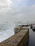 Jaffa Port 5.jpg