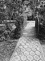 Jardín Botánico de Quito, pic. ab8.JPG