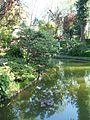 Jardín Japonés de Montevideo 13.JPG