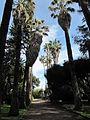 Jardim Botanico Tropical (14008941034).jpg