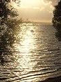 Jezioro Żarnowieckie - panoramio (3).jpg