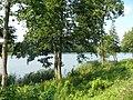 Jezioro Złotowskie - panoramio.jpg
