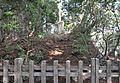 Jingoji Tombs 01.jpg