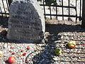 Johnny Appleseeds Gravesite, Image 1.jpg