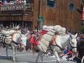 July 4th Parade Ennis Montana 2014 32.JPG