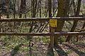 Kalktuffquellen am Jakobsbrunnenweg in Amstetten 2014-03 04 NÖ-Naturdenkmal AM-081.jpg