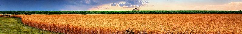 File:Kansas banner.jpg
