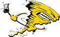 Karlsruhe Storm Logo.jpg