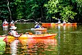 Kayaking the Tar River.jpg