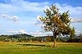 Kempten - Robenhauser Riet 2012-10-13 17-13-07.JPG