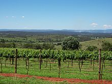 South Burnett Wine Properties For Sale At This Moment