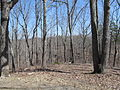 Kings Mountain National Military Park - South Carolina (8557809415) (2).jpg