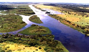 Kissimmee River - A stretch of the straightened and channelized Kissimmee River in central Florida