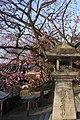 Kiyomizu temple 清水寺 - panoramio.jpg