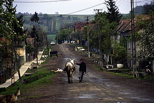 Hodod - Nadișu, Kloten Utca
