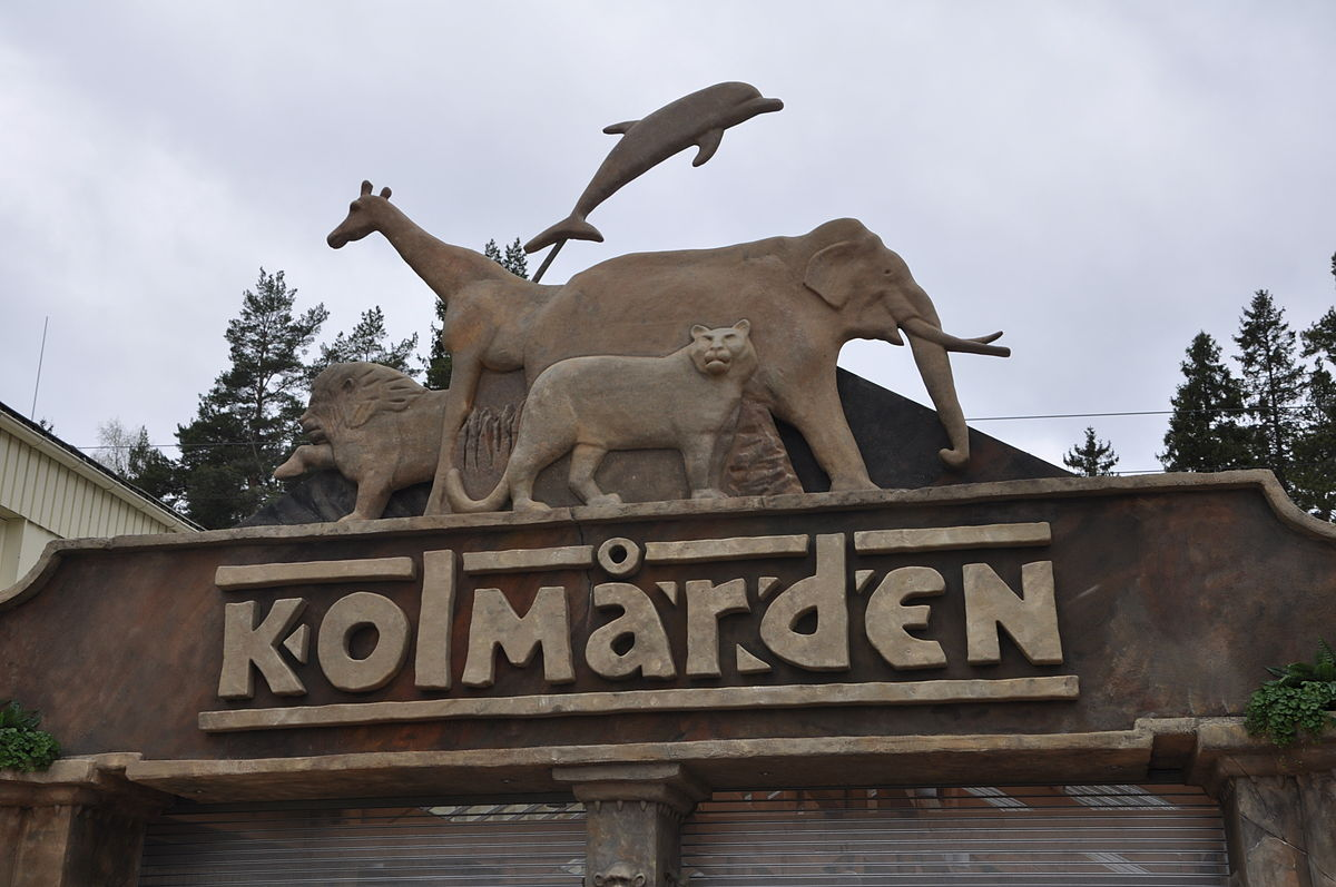 Image result for Kolmården Wildlife Park sweden