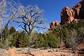 Kolob Canyons, Walk to the Kolob Arch (Zion National Park) (3440138006).jpg