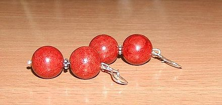 Coral earrings of this type are often made from coral harvested off seamounts. Koral1.jpg