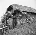 Korletova zidanica iz Gornjega Križa v Brinovi Gori 1957.jpg