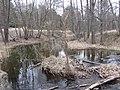 Kriaunų sen., Lithuania - panoramio (75).jpg