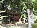 Kyougasima.JPG
