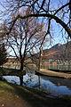 Lac d'Annecy 20120101 - 15.JPG
