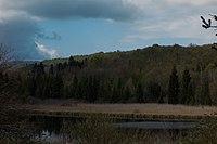 Lac d'Onoz, Jura, France.jpg