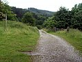 Ladybower Reservoir bridleway looking NE - geograph.org.uk - 473659.jpg