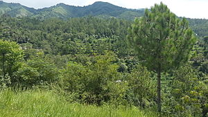 Lower Dir District - Image: Lajbouk 14