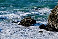 Lands End - Seal Rocks - March 2018 (4934).jpg