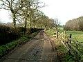 Lane to Kimberley Hall Farm - geograph.org.uk - 111147.jpg