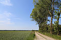 Lapscheure Vlietweg R02.jpg