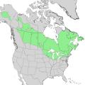 Larix laricina range map 2.png