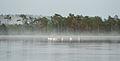 Laululuiged Kakerdi järvel.jpg