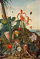 Laurens van der Vinne - Hortus Leiden c.1750 -02657 Venne bloemstilleven.jpg