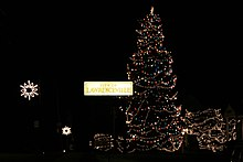 The city of Lawrenceville lights a tree up for Christmas.