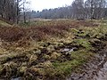 Laymoor Quag - March 2013 - panoramio (2).jpg